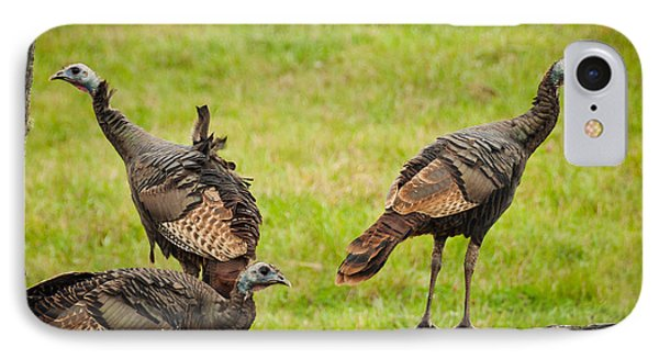 IPhone Case featuring the photograph Bunch Of Turkeys by Cheryl Baxter