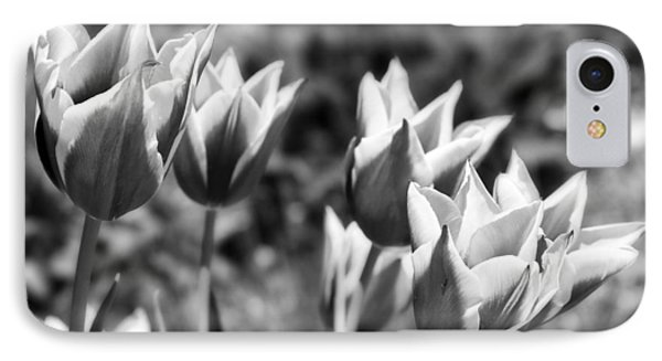 Burgundy Yellow Tulips In Black And White Phone Case by James BO  Insogna