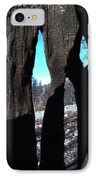 Burned Trees 10 IPhone Case by Naxart Studio