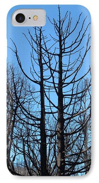 Burned Trees 2 IPhone Case by Naxart Studio