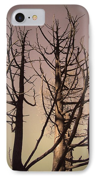 Burned Trees 3 IPhone Case by Naxart Studio