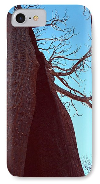 Burned Trees 6 IPhone Case by Naxart Studio
