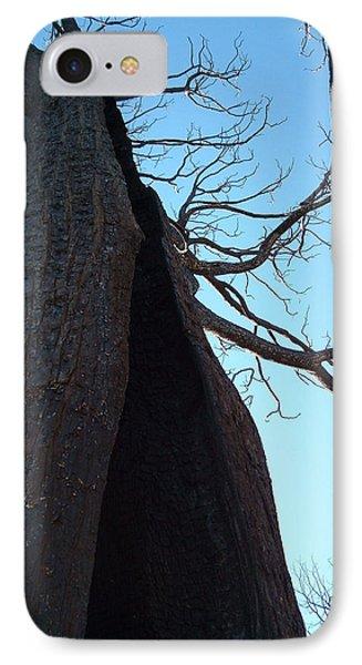 Burned Trees 7 IPhone Case by Naxart Studio