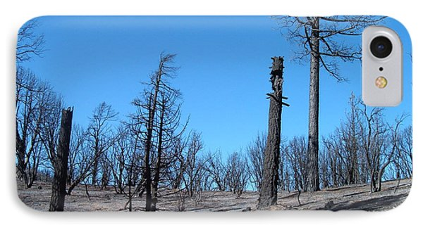 Burned Trees In California IPhone Case by Naxart Studio