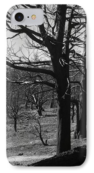 Burned Trees IPhone Case