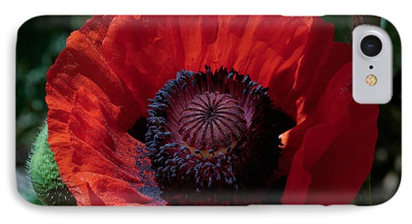 IPhone Case featuring the photograph Burning Poppy by Mitch Shindelbower