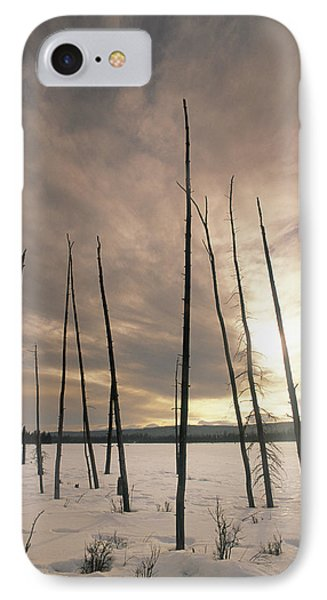 Burnt Pieces Of Black Spruce, Boggy Phone Case by Darwin Wiggett