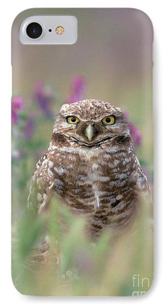Burrowing Owl IPhone Case