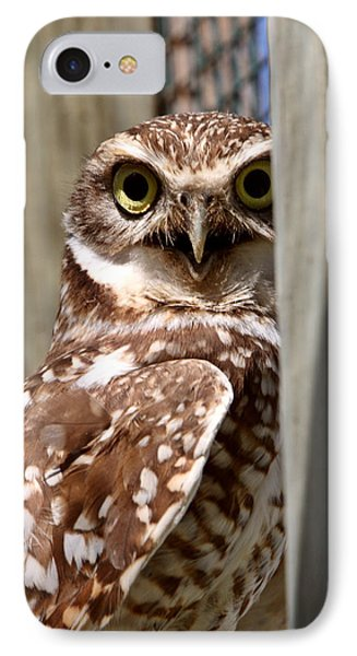 Burrowing Owl On Enclosed Window Seal Phone Case by Mark Duffy