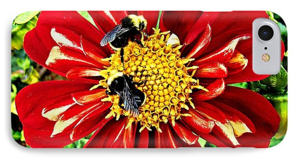IPhone Case featuring the photograph Busy Bees by Nick Kloepping