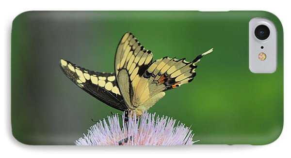 IPhone Case featuring the photograph Butterflies Are Free by Kathy  White
