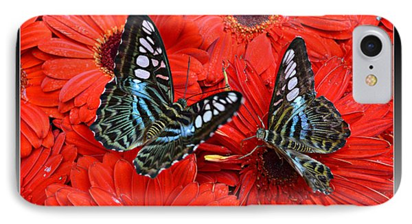 IPhone Case featuring the photograph Butterflies On Red Flowers by Rima Biswas