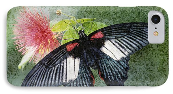 Butterfly And Silktree - Fs000581-a IPhone Case