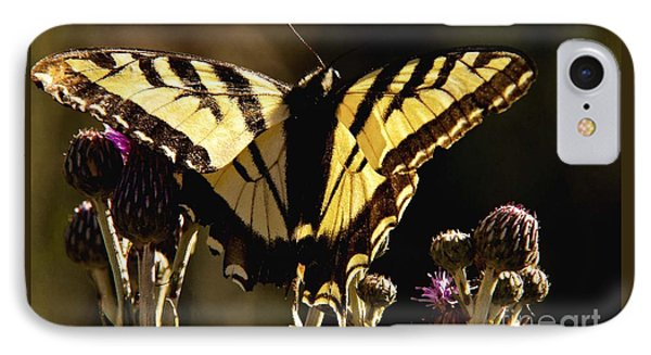 IPhone Case featuring the photograph Butterfly And Thistle II by Angelique Olin