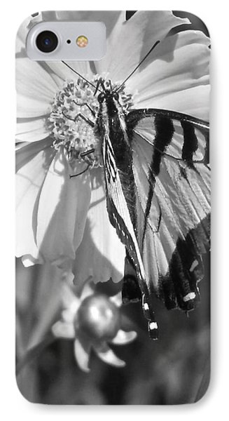 Butterfly Collection Black White Phone Case by Debra     Vatalaro