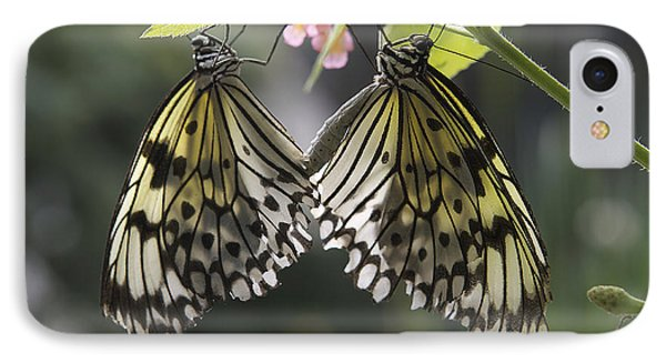 Butterfly Duo IPhone Case by Eunice Gibb