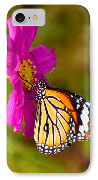 Butterfly II IPhone Case by Fotosas Photography