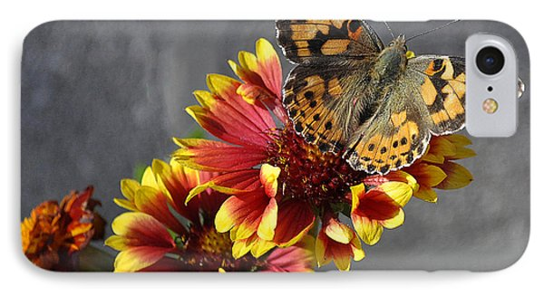 IPhone Case featuring the photograph Butterfly On A Gaillardia by Verana Stark