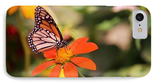 Butterfly On Flower 1 Phone Case by Artie Wallace