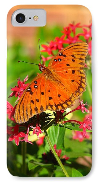 IPhone Case featuring the photograph Butterfly On Pentas by Carla Parris
