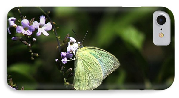 IPhone Case featuring the photograph Butterfly On Purple Flower by Ramabhadran Thirupattur