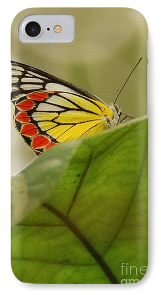 IPhone Case featuring the photograph Butterfly Resting by Fotosas Photography