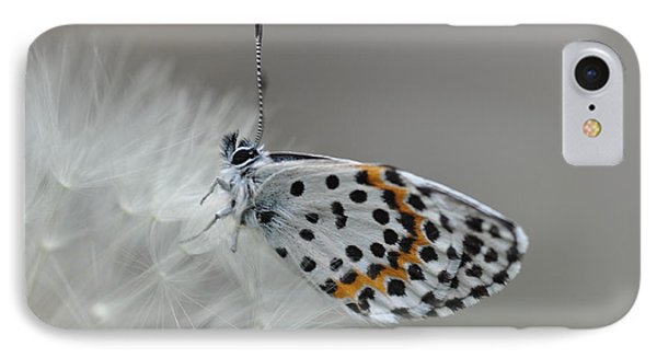 Butterfly IPhone Case by Sylvie Leandre