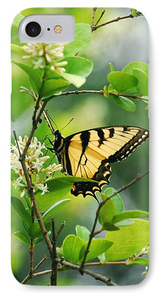 IPhone Case featuring the photograph Butterfly Tiger Swallow by Peggy Franz