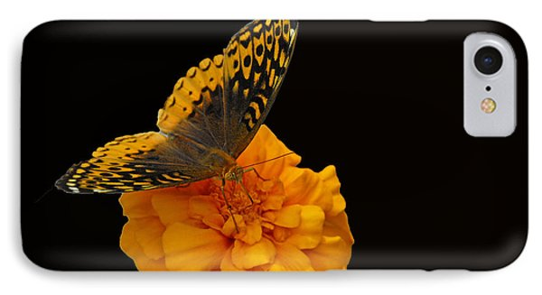 IPhone Case featuring the photograph Butterfly Visitor by Cindy Manero