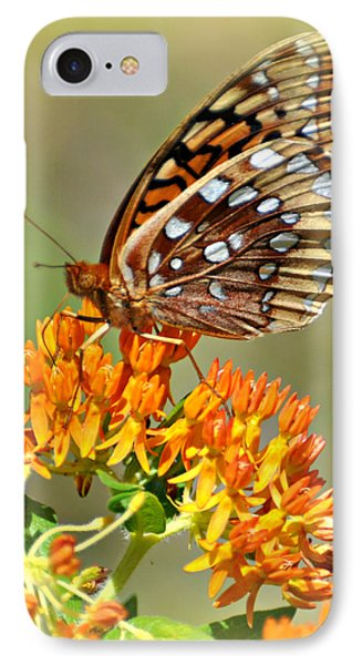 Butterfly Weed 1 Phone Case by Marty Koch