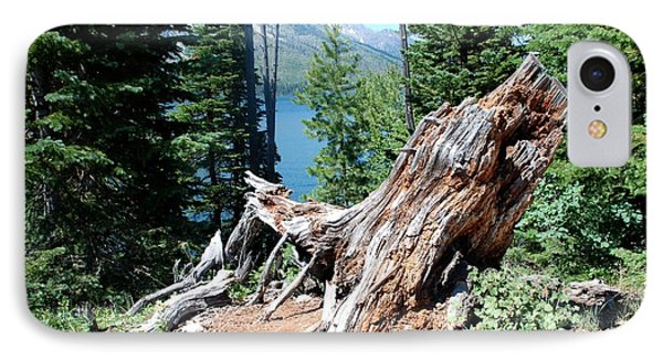 By Jenny Lake IPhone Case by Dany Lison