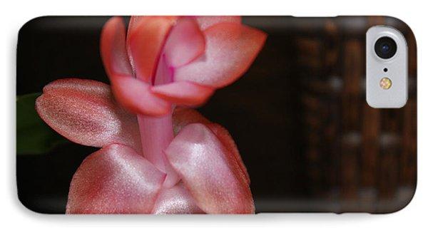Cactus Wicker IPhone Case by Deborah Hughes