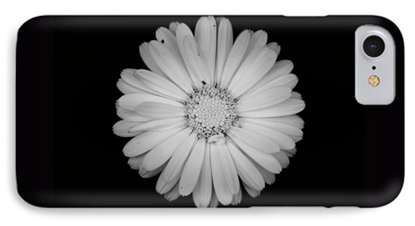IPhone Case featuring the photograph Calendula Flower - Black And White by Laura Melis