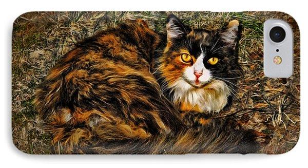 Calico Cat IPhone Case by Joan  Minchak