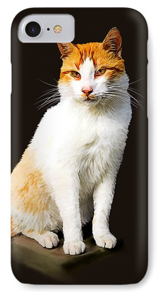 Calico Phone Case by Tom Schmidt