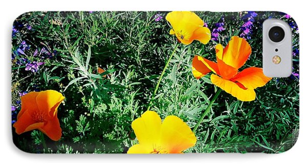 IPhone Case featuring the photograph California Poppy by Nina Prommer