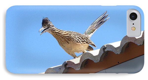 IPhone Case featuring the photograph California Roadrunner by Carla Parris