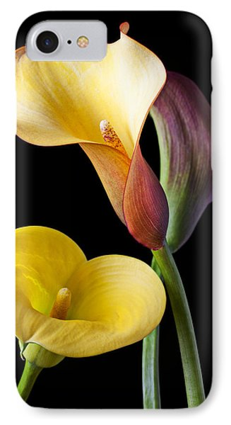 Calla Lilies Still Life Phone Case by Garry Gay
