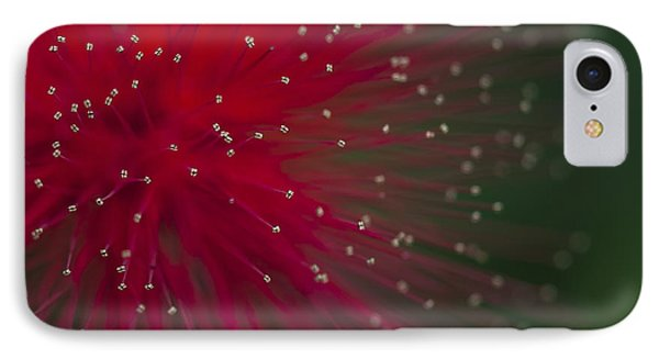 Calliandra II IPhone Case