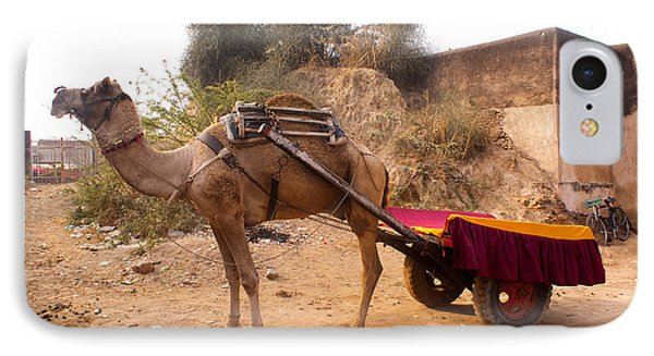 Camel Yoked To A Decorated Cart Meant For Carrying Passengers In India IPhone Case by Ashish Agarwal