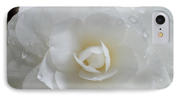 Camellia After Rain Storm IPhone Case by Shane Kelly