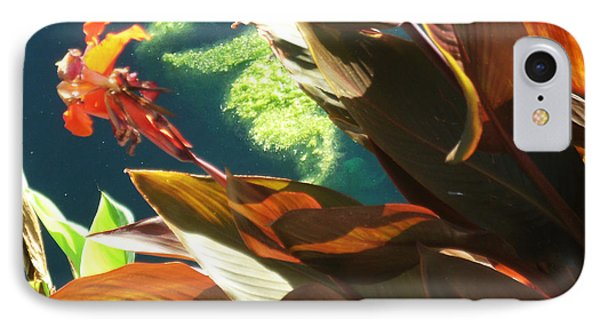 Canna Lily And Water In San Angelo Civic League Park Phone Case by Louis Nugent