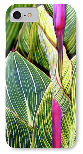 Canna Lily Foliage Phone Case by Dr Keith Wheeler