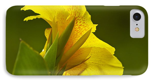 Canna Lily Phone Case by Heiko Koehrer-Wagner