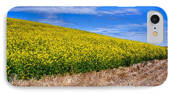 Canola And Stubble IPhone Case