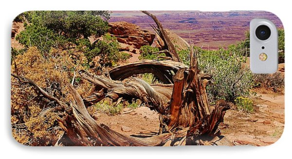 Canyonlands 2 IPhone Case by Dany Lison