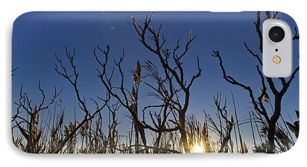 Cape Cod Marsh At Sunset IPhone Case by Marianne Campolongo