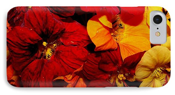 Capucines IPhone Case by Sylvie Leandre