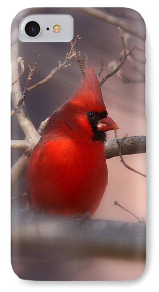 Cardinal - Unafraid IPhone Case