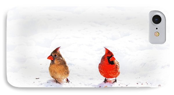 Cardinal Couple II Phone Case by Tamyra Ayles